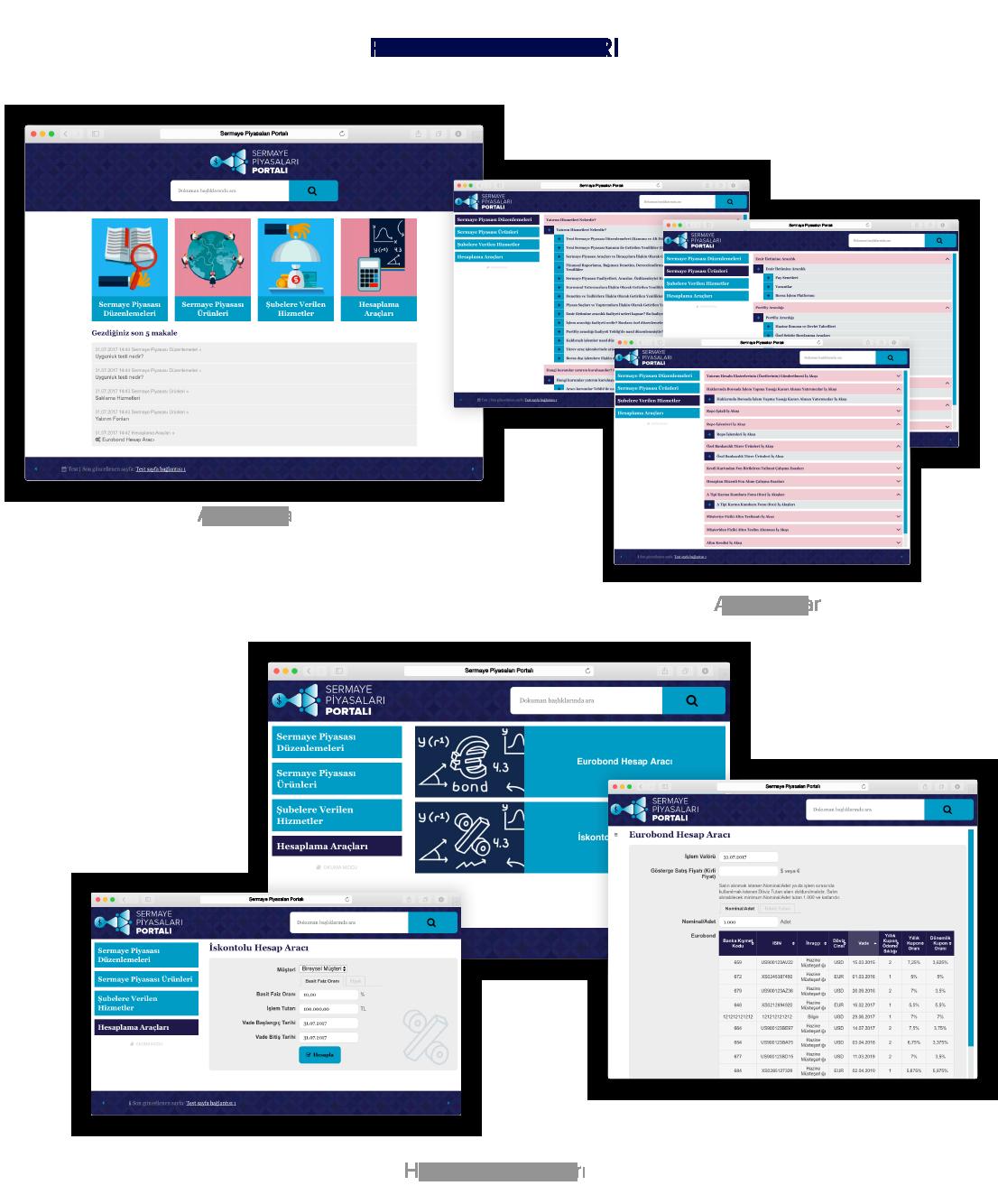 Sermaye Piyasası Portal Ekranları